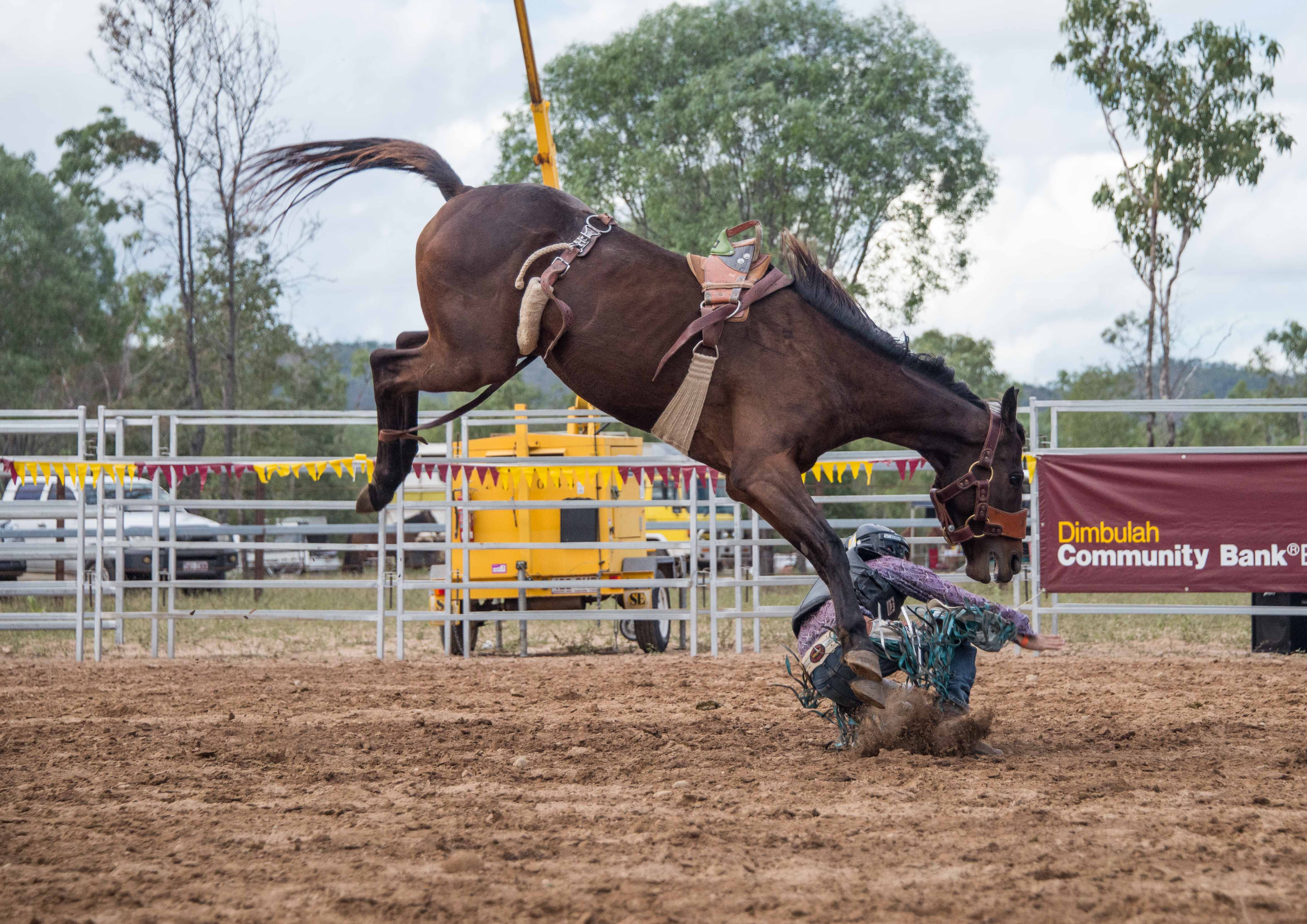 how to become a rodeo clown in australia