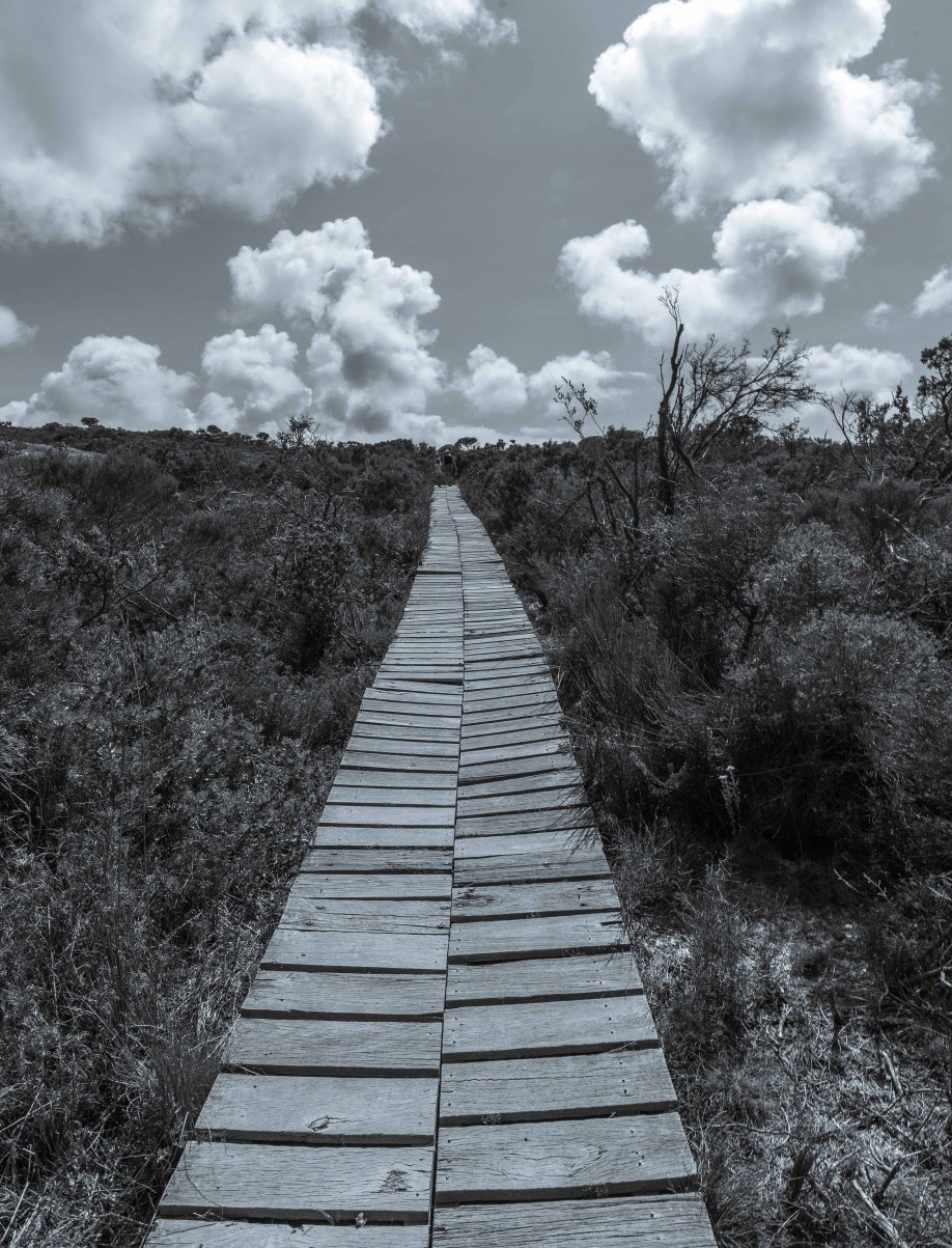 11-2 B&W path