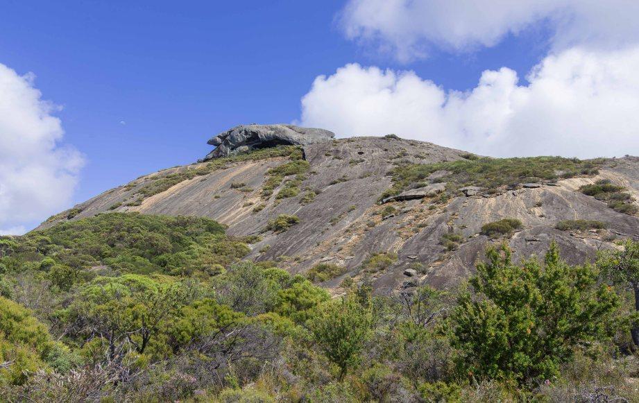 11-2 frenchmans peak