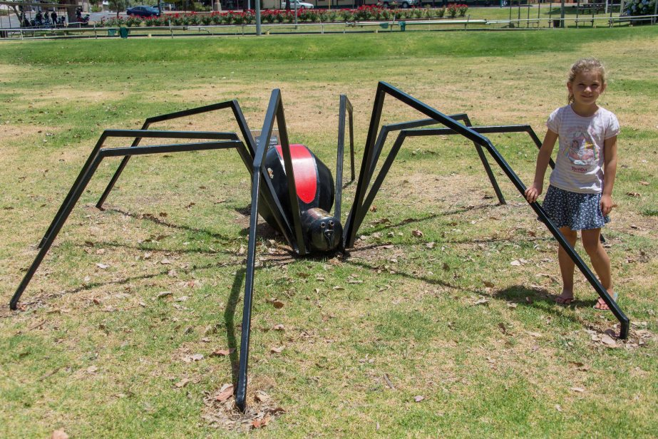 18-1 nannup red back sculpture